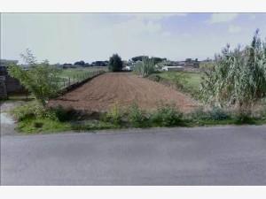 TERRENO AGRICOLO NETTUNO (RM)