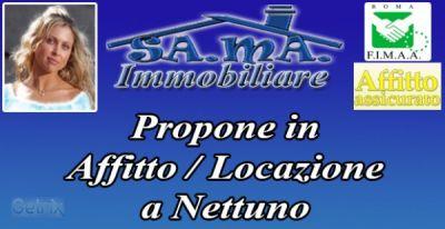 Appartamento_affitto_Nettuno_351629200